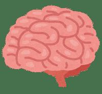 http://rita.xyz/blog/irasutoya/body_brain_nou-w200-zf.png